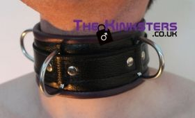Black & Yellow Padded Leather Collar