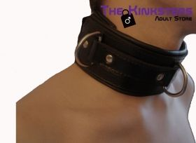 Black Padded Leather Collar