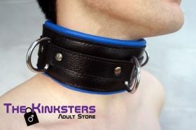 Black & Blue Padded Leather Collar