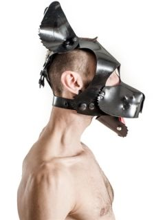 Fetch Rubber Dog Hood